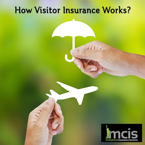 How Visitor Insurance Works-image