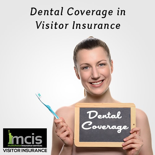 Dental Coverage in Visitor Insurance-image
